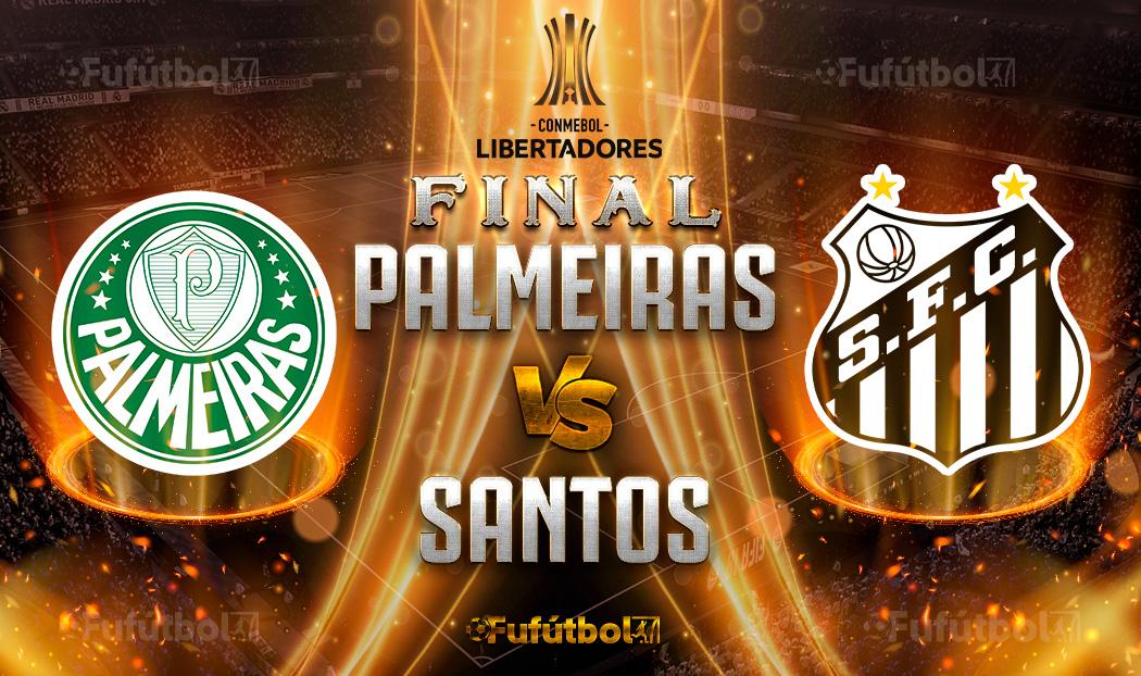 Ver Palmeiras vs Santos en EN VIVO y EN DIRECTO ONLINE por internet